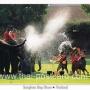 โปสการ์ด ช้างไทย เล่นน้ำสงกรานต์ (M216)